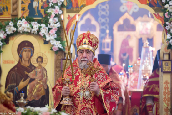Митрополит Омский и Таврический Владимир