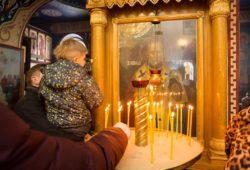Митрополит Владимир в монастыре
