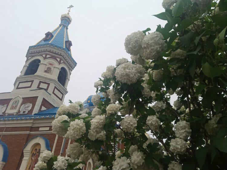 Праздник вчесть Владимирской иконы Пресвятой Богородицы